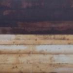 Beschoeiingsschot hard- en vurenhout